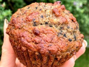 Berry Blitz Muffins and Nutrient Dense Foods